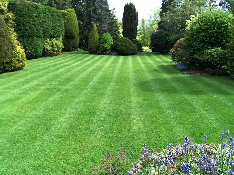 Allen Landscaping - Garden Contractors